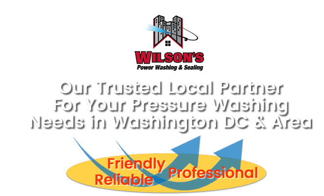 Header Image-Wilson's Power Washing and Sealing Washington DC-Mr Dirt Blaster Local Partner