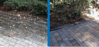 Before and after power washing pavers on driveway to remove moss, stains and mold